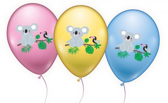 """6 Ballons / Balloons  """"Koala"""""""