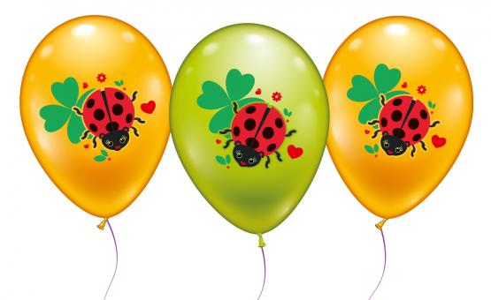 6 Ballons Glückskäfer/ Balloons Ladybug